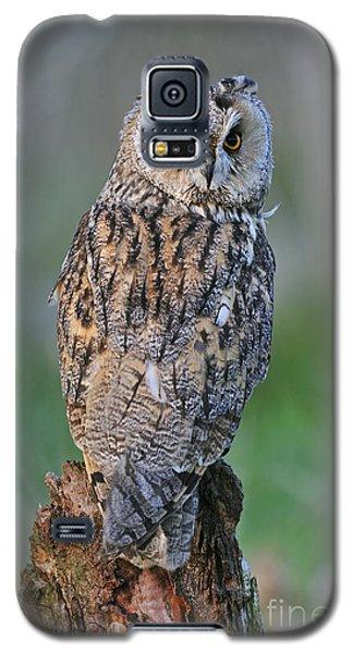 090811p316 Galaxy S5 Case