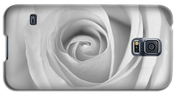 Galaxy S5 Case featuring the photograph A Rose Is A Rose Is... by Silke Brubaker