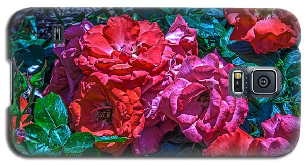 A Rose Is A Rose Galaxy S5 Case by Richard J Cassato