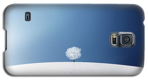 Cold Galaxy S5 Case - A Tree In The Field by Bess Hamiti