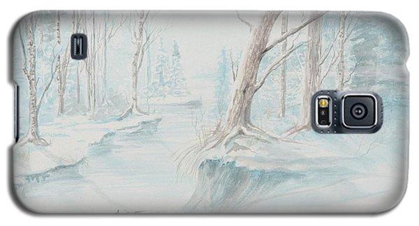 A Winter Path Galaxy S5 Case