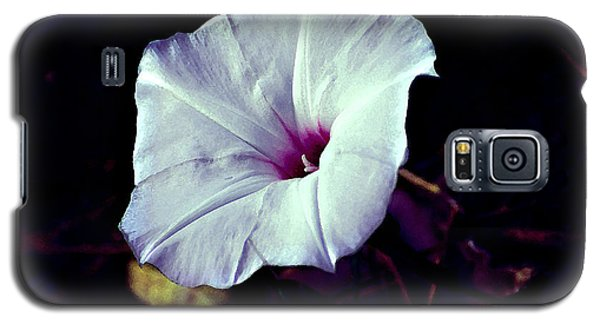 Alabama Wild Morning Glory Galaxy S5 Case