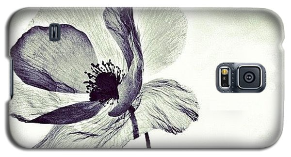 Instagramhub Galaxy S5 Case - Alone by Marianna Mills