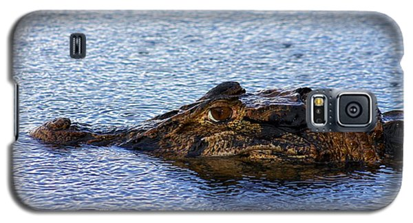 Galaxy S5 Case featuring the photograph Amazon Alligator by Henry Kowalski