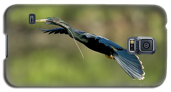 Anhinga Galaxy S5 Case by Anthony Mercieca