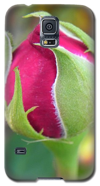 Galaxy S5 Case featuring the photograph Anticipation by Deb Halloran