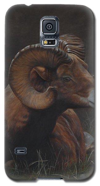 Anticipation Galaxy S5 Case