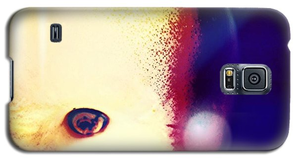 Apple Galaxy S5 Case by Jason Michael Roust
