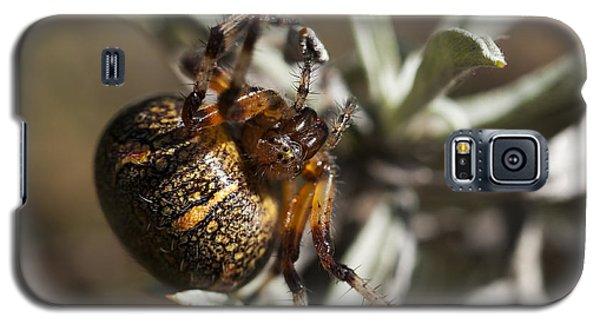 Arachnophobia Galaxy S5 Case