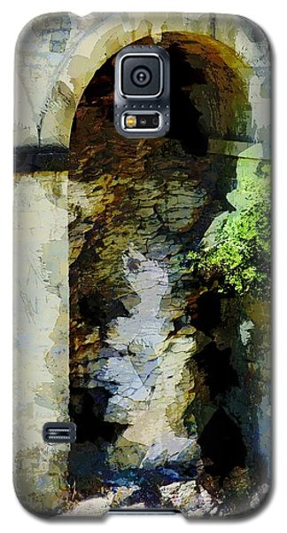Arches Galaxy S5 Case