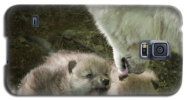 Arctic Wolf Pups Galaxy S5 Case