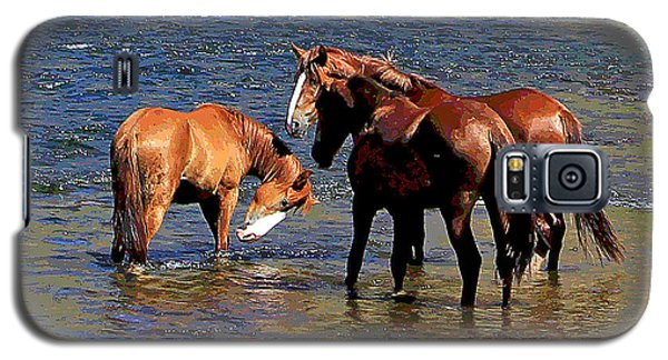 Arizona Wild Horses On The Salt River Galaxy S5 Case
