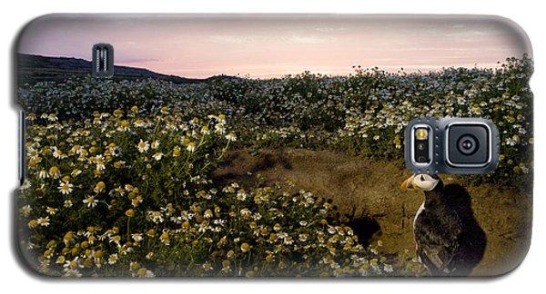 Atlantic Puffin At Burrow Skomer Island Galaxy S5 Case by Sebastian Kennerknecht