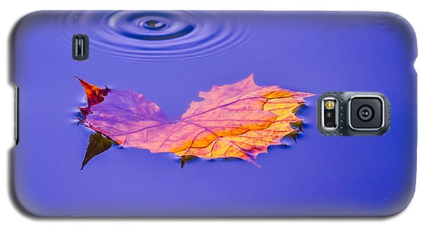 Galaxy S5 Case featuring the photograph Autumn Drops by Brian Stevens
