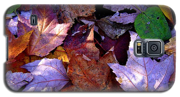 Autumn Groundcover Galaxy S5 Case