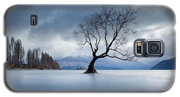 Autumn Lament Galaxy S5 Case