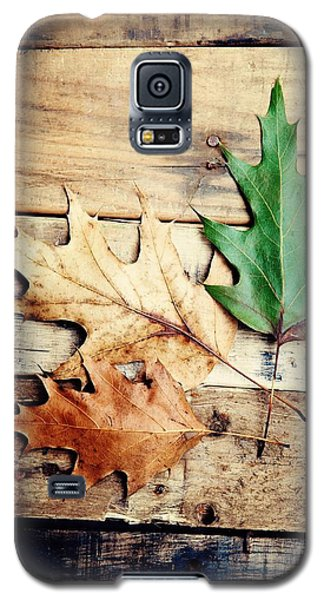 Galaxy S5 Case featuring the photograph Autumn Leaves Ablaze With Color by Kim Fearheiley