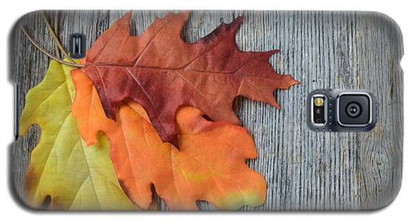 Autumn Leaves On Rustic Wooden Background Galaxy S5 Case