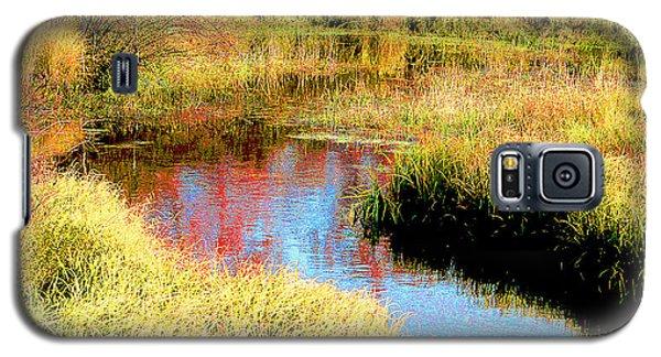Galaxy S5 Case featuring the digital art Autumn On A Pennsylvania Mountain Stream by A Gurmankin