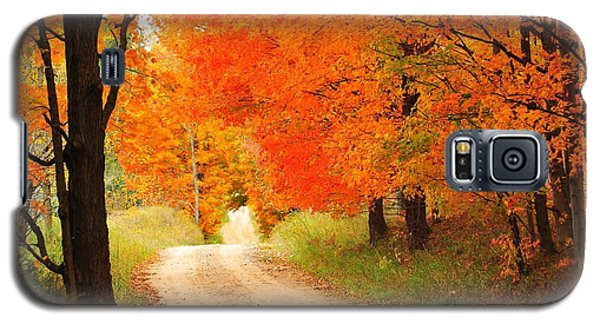 Galaxy S5 Case featuring the photograph Autumn Trail by Terri Gostola