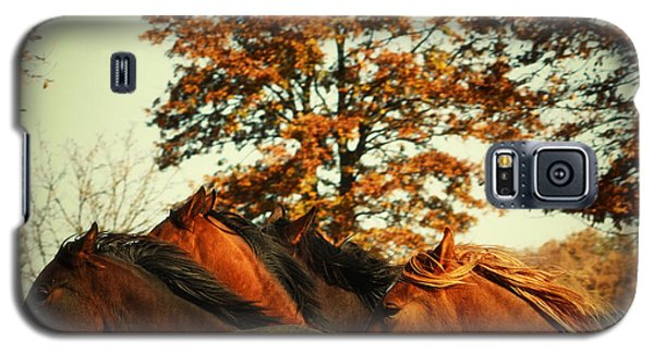 Autumn Wild Horses Galaxy S5 Case