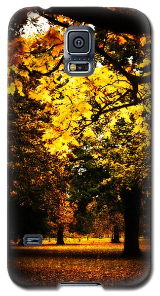 Autumnal Walks Galaxy S5 Case by Lenny Carter