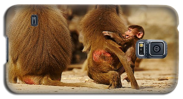 Galaxy S5 Case featuring the photograph Baboon Family In The Desert by Nick  Biemans