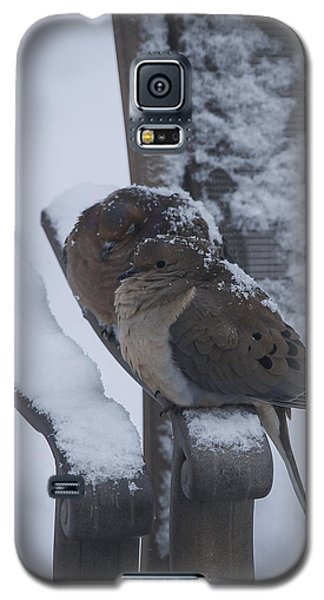 Galaxy S5 Case featuring the photograph Baby It's Cold Outside 2 by Phil Abrams