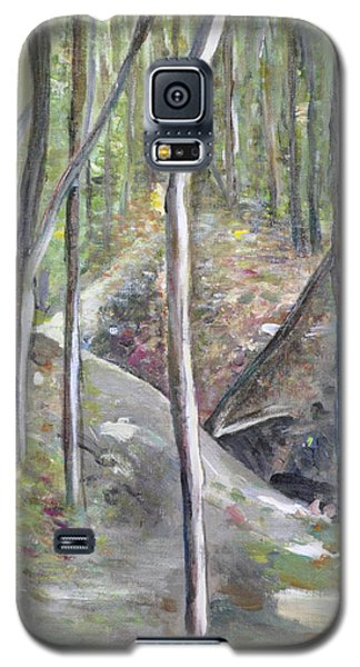 Backyard At Sussex 3 Galaxy S5 Case