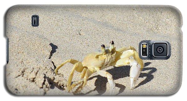 Beach Stroller Galaxy S5 Case