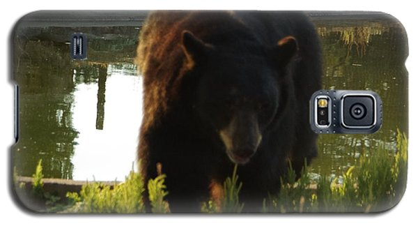 Bear 1 Galaxy S5 Case
