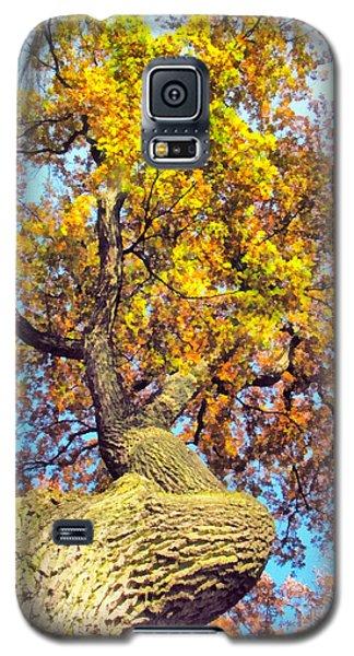 Beautiful Autumn Landscape Galaxy S5 Case by Odon Czintos
