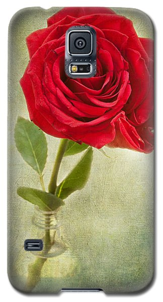 Beautiful Rose Galaxy S5 Case by Lena Auxier