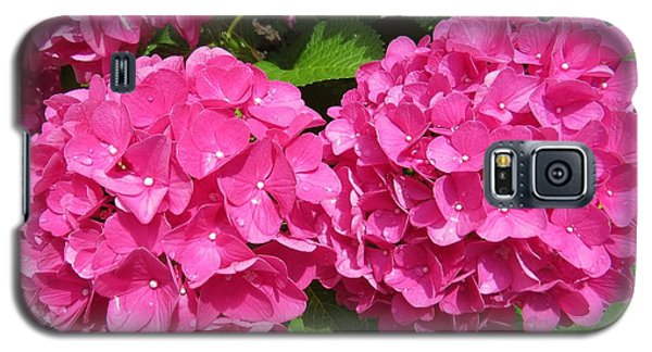 Galaxy S5 Case featuring the photograph Beauty In Pink by Jeanette Oberholtzer