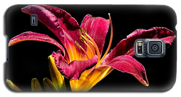 Beauty On The Black #5 Galaxy S5 Case