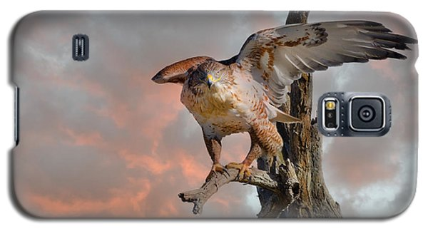 Bird Of Prey Galaxy S5 Case