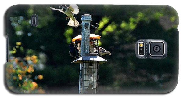 Birds03 Galaxy S5 Case