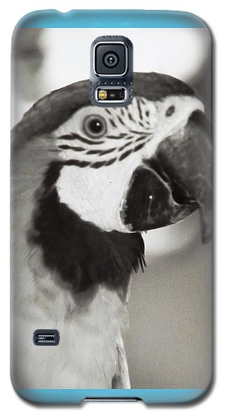 Black And White Parrot Beauty Galaxy S5 Case by Belinda Lee