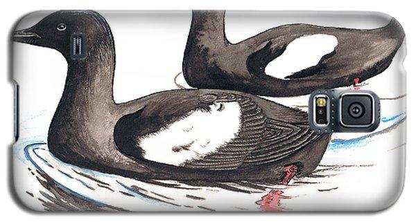 Black Guillemot Galaxy S5 Case