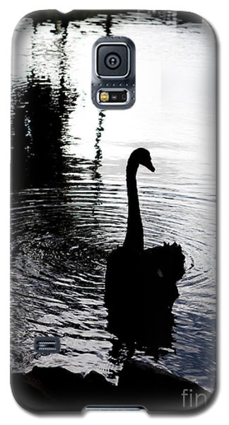 Black Swan Galaxy S5 Case by Roselynne Broussard