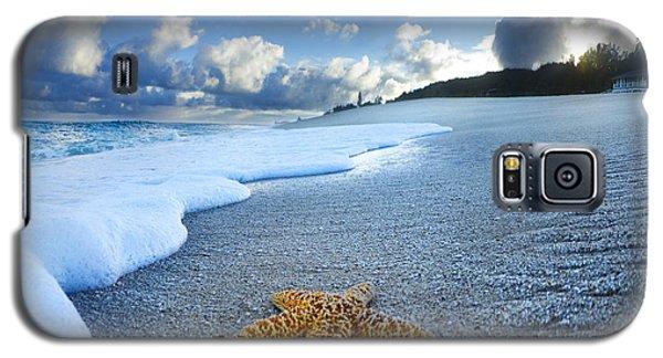Blue Foam Starfish Galaxy S5 Case