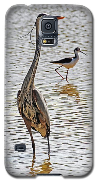 Blue Heron And Stilt Galaxy S5 Case by Tom Janca
