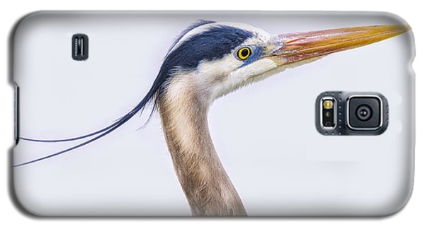 Blue Heron Profile Galaxy S5 Case