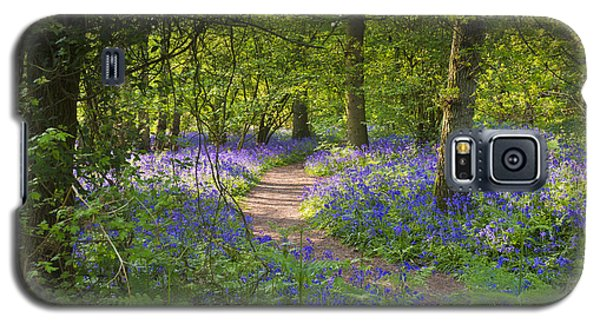 Bluebell Woods Walk Galaxy S5 Case