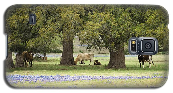 Bluebonnets And Bovines Galaxy S5 Case by Debbie Karnes