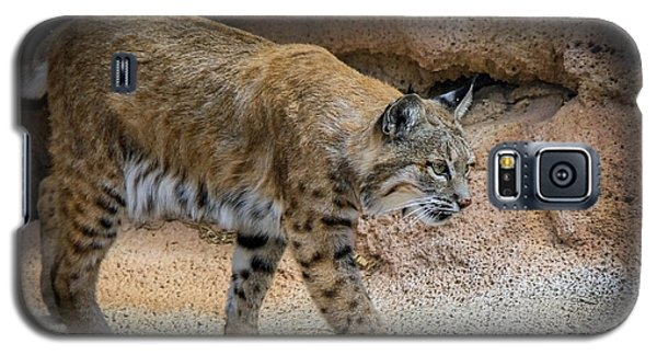 Galaxy S5 Case featuring the photograph Bobcat by Elaine Malott