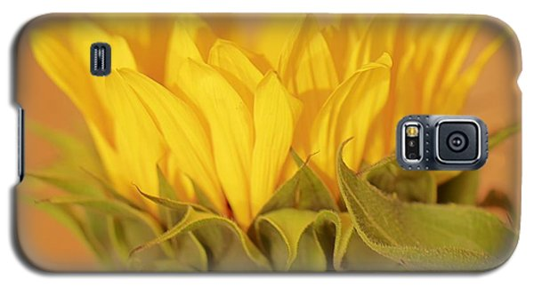 Bright And Sunny Galaxy S5 Case by Deborah  Crew-Johnson