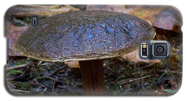 Galaxy S5 Case featuring the photograph Brown Toadstool by Chalet Roome-Rigdon