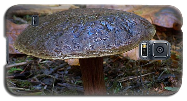 Brown Toadstool Galaxy S5 Case by Chalet Roome-Rigdon