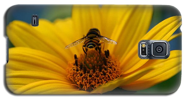 Busy Bee Galaxy S5 Case by Denyse Duhaime